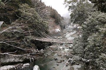 2月16日~ かずら橋渡橋再開