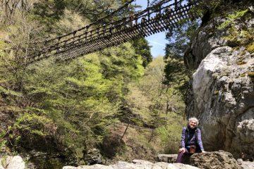奧祖谷二重かずら橋