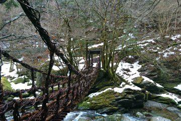 春の訪れ間近な奥祖谷二重かずら橋