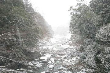 祖谷の絶景 雪景色 & 雪化粧(^^)d