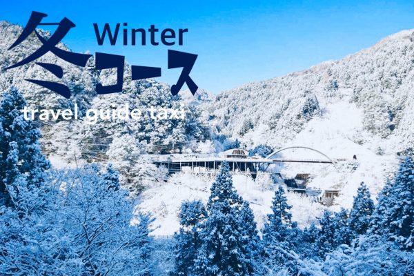 ⛄️冬のオススメ観光コース【3時間13,140円】