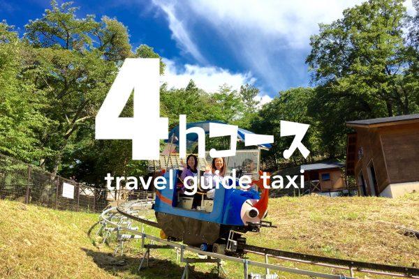 ⌛️【4時間17,520円】貸切観光コース