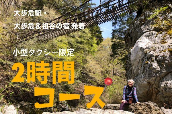 📍【2時間8,760円】祖谷のかずら橋+祖谷渓谷(ひの字・小便小僧)コース