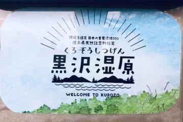 徳島県の黒沢湿原だぁー!