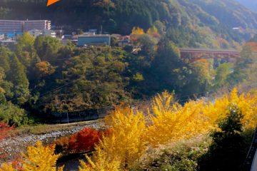 祖谷渓タクシーの周辺